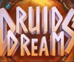 Druids Dream Video Slot Game